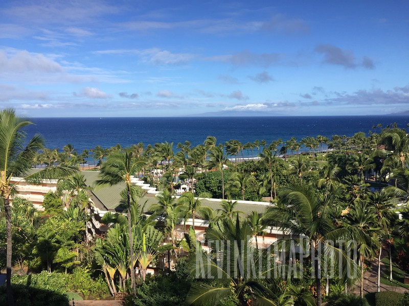 HawaiiPhonePics-363.JPG