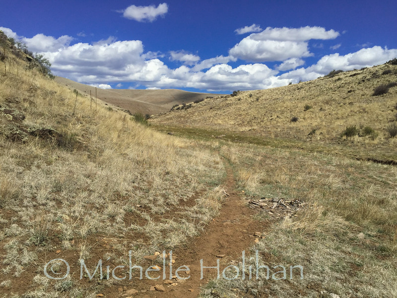 Continental Divide Trail just past Snow Lake in Gila National Forest in New Mexico.