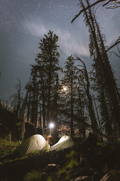 Austin Heinrich (no IG) prepares for sleep under the Idaho stars on a bonsai scouting trip. July 2018