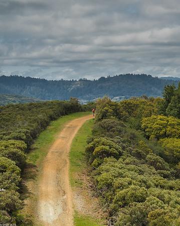 priest rock trail in april