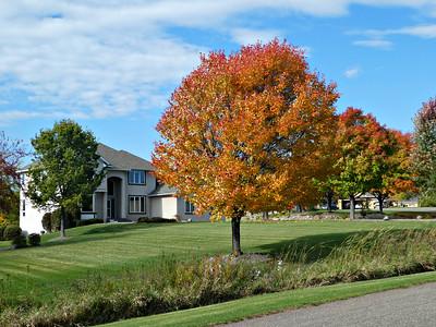 2018-10-13 - Autumn Colors
