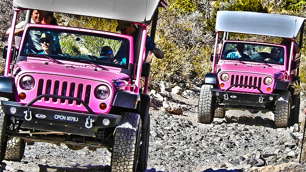 Pink Jeeping