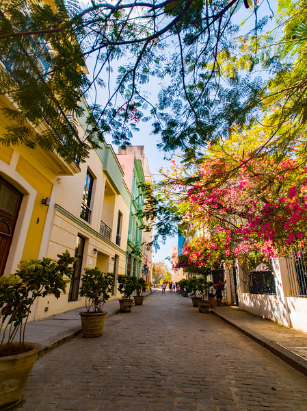 old havana street.jpg
