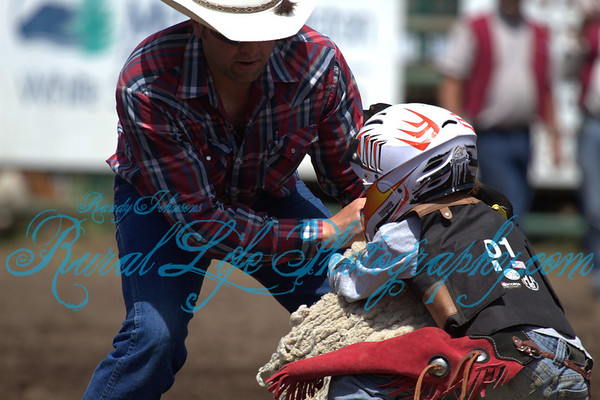 2 Glenwood Ketchum Kalf 2013 #1 Saturday a Little Mutton Busting,Bronc,Tie Down,Breakaway, Rough Stock ,Action
