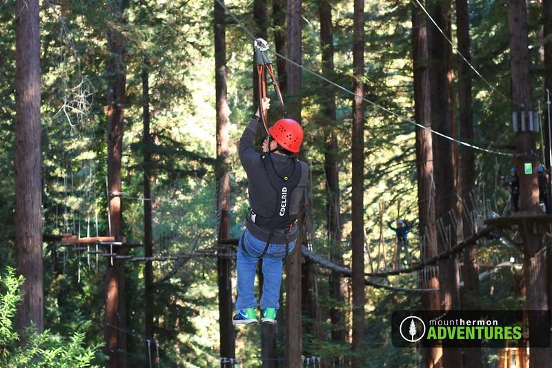 sequoiazip_1475701804966.jpg