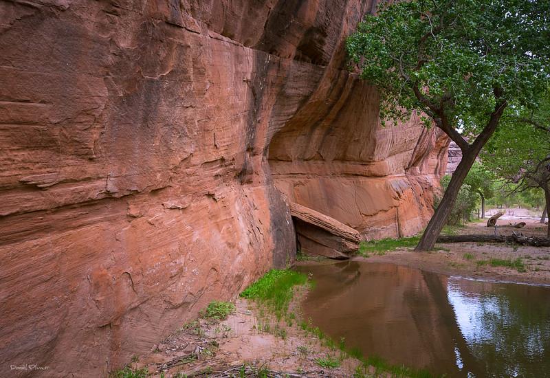 Navajo Sonata