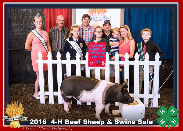 4-H beef, sheep and swine sale