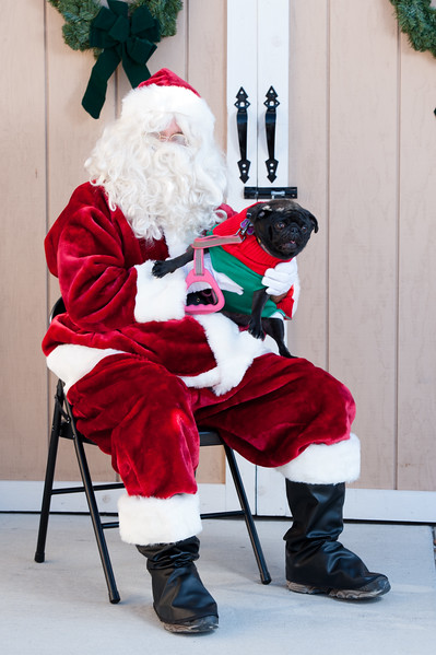 Photos with Santa at Naperville Humane Society by Maritza Partida 2017-3145.jpg