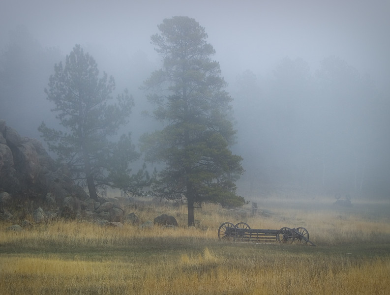 'Whispers' - Conifer, Colorado
