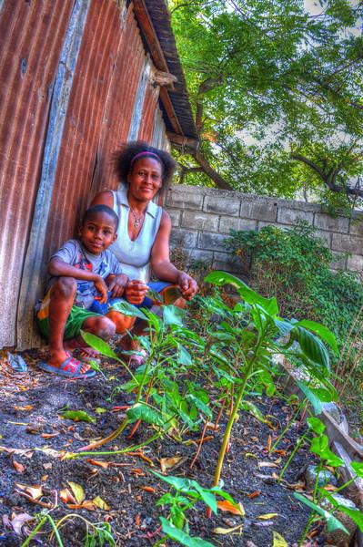 MicroGarden initiative in Port au Prince Haiti