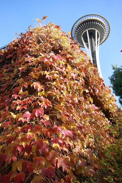 Seattle 031.JPG