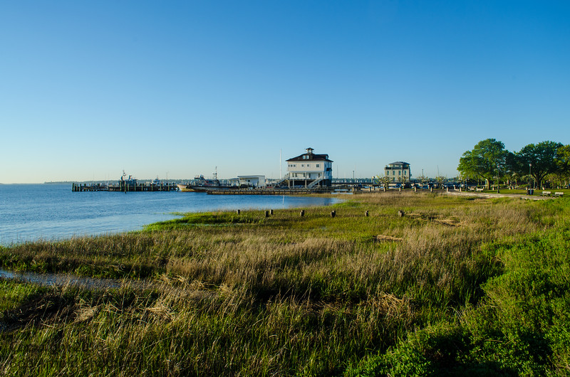 Early Morning Charleston Walk-16.JPG