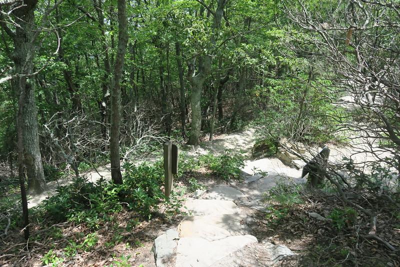 Ledge Spring-Jomeokee Trail Junction