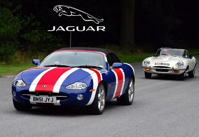 JAGUAR CARS 2003 - PRESENT.