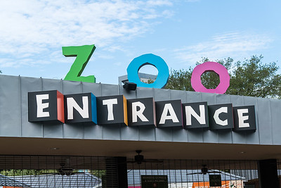Houston Zoo 7-11-17