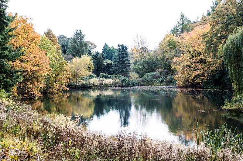 Derbyshire landscapes (20 of 20).jpg