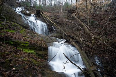 Left Fork Smith Creek