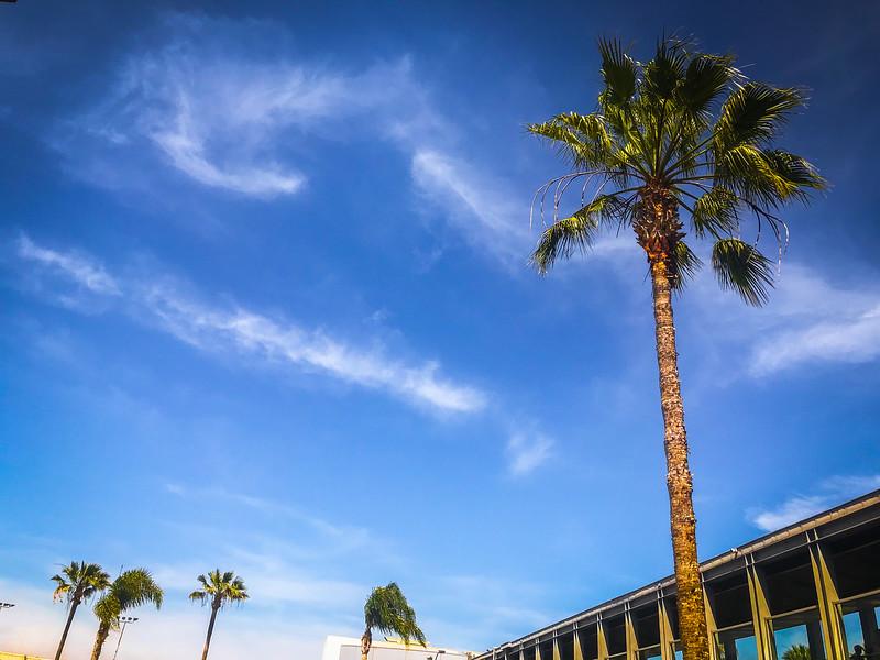 San_Diego-66.jpg