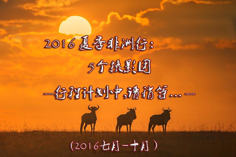 2016七月.jpg