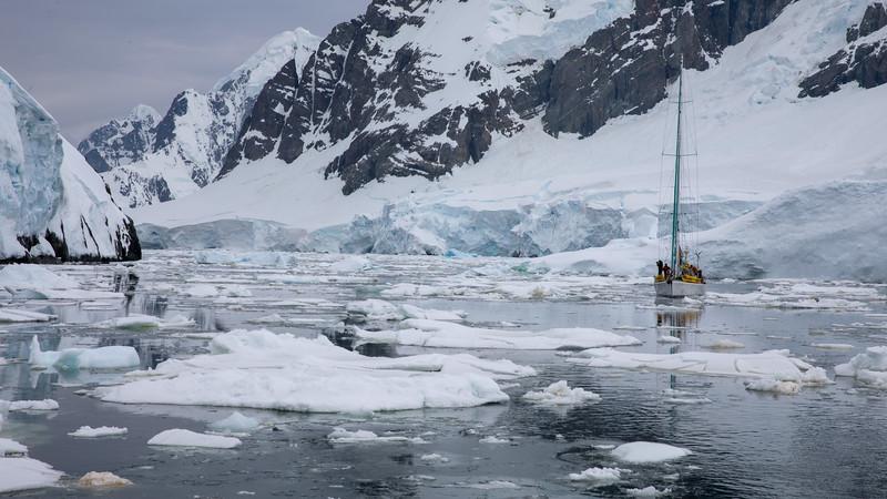 2019_01_Antarktis_04243.jpg