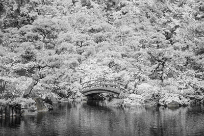 Anderson Japanese Gardens - Summer Black and  White from Infrared