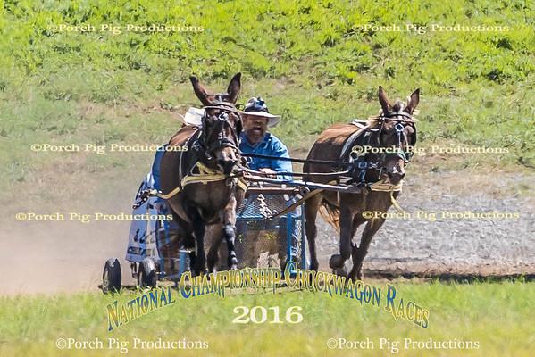 Friday Big Mules   2016 National Championship Chuckwagon Races