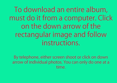 How to Download images