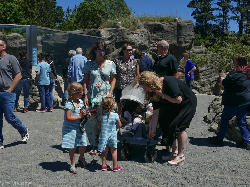 Rogers memorial at the aquarium (68 of 71).jpg