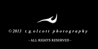 t g olcott   photography