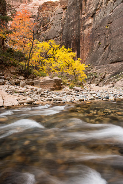 Some more fall color while in the Narrows