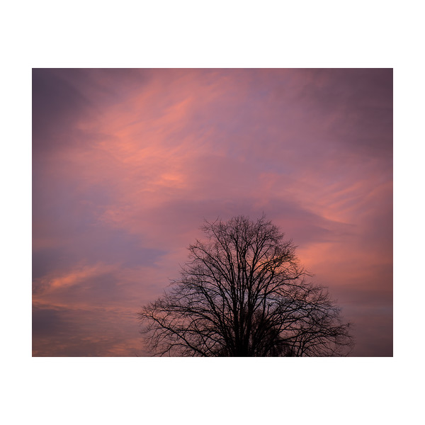 337_SunsetSky_10x10.jpg
