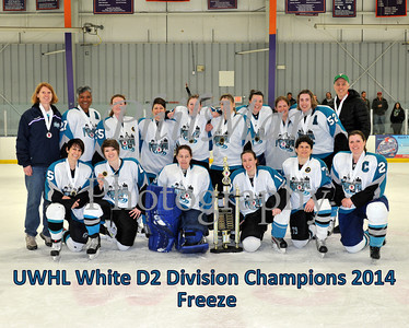 White D2 Championship -  Freeze vs Wings