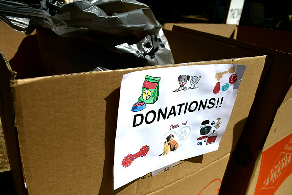 9/1/2018 Mike Orazzi | Staff The donation box during the Bow Wow in the Park held at Rockwell Park in Bristol Saturday.