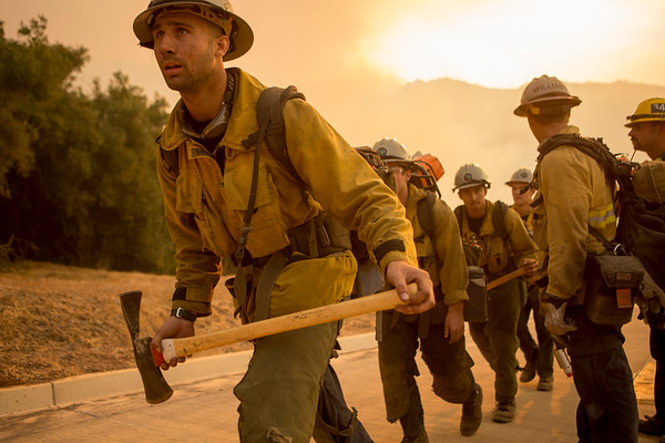 Burn Operation in Santa Monica Canyon, Carpenteria, Dec. 11th