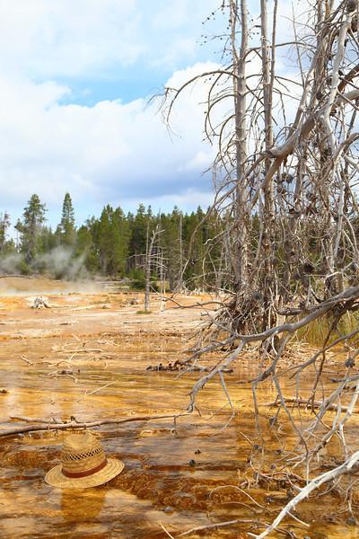 Yellowstone 089.JPG