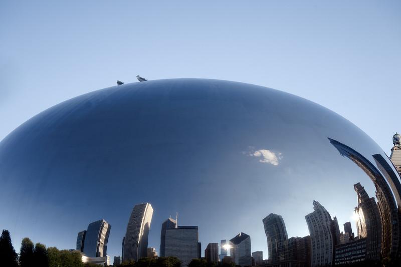 One Cloud Bean - July 16, 2014