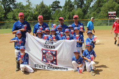 bullard-u8-baseball-team-wins-state-title-heading-to-nationals