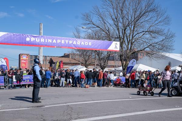 2020-02-16  Purina Beggin Pet Parade