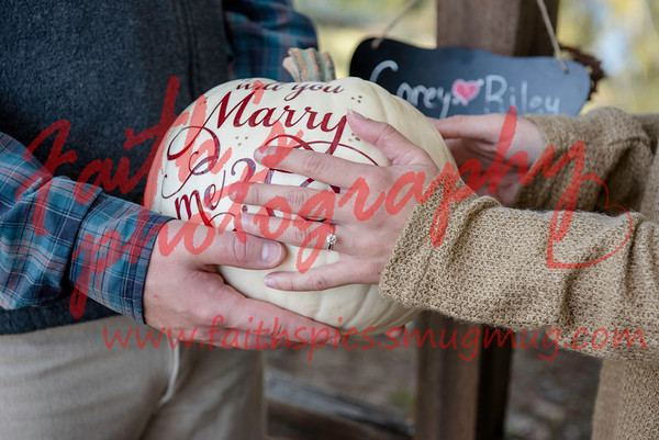 Corey's proposal to Riley 102018