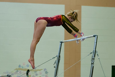 HS Sports - Verona/Mad Edgewood Gymnastics - Feb 24, 2018