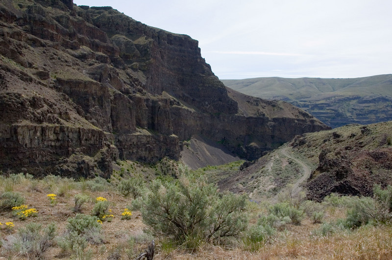 Looking down towards Moses Coulee.