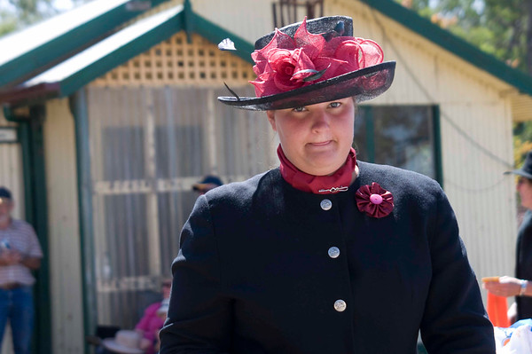 Victorian Carriage Driving Champs - Gallery 5