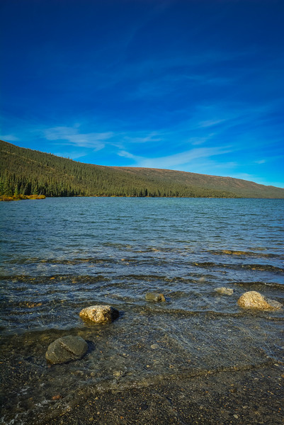 Denali-National-Park-126.jpg