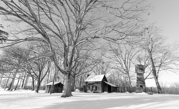 Amish Landscapes in Snow Storm - 2017 Jan 7