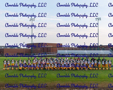 Nelson County Football - Teams Photo