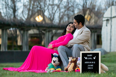 Shon Vishakha Maternity Shoot