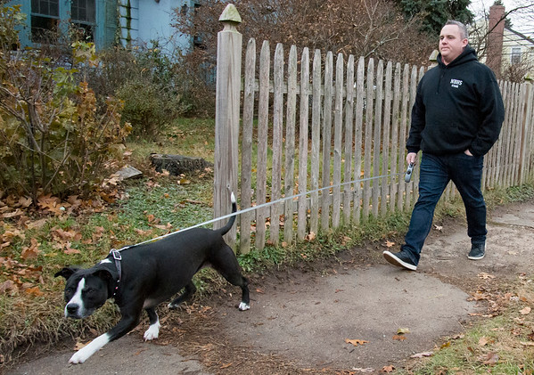 11/20/19 Wesley Bunnell | StaffrrAlderman Robert Smedley takes his dog Beauty on her daily afternoon walk on Wednesday November 20, 2019.