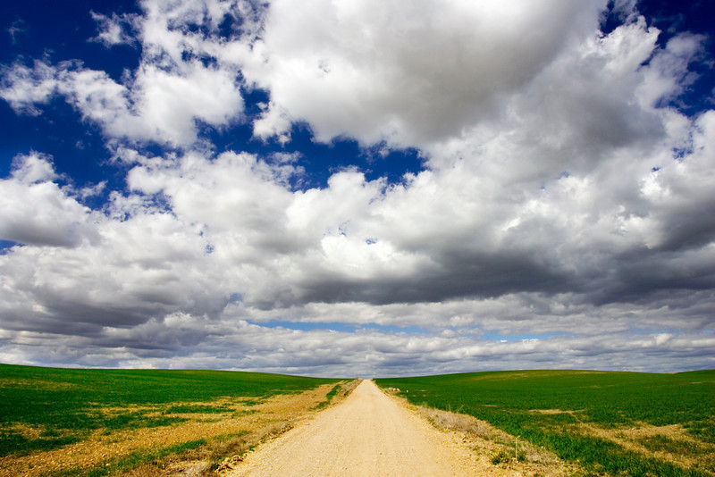 Road through Andalusian fields