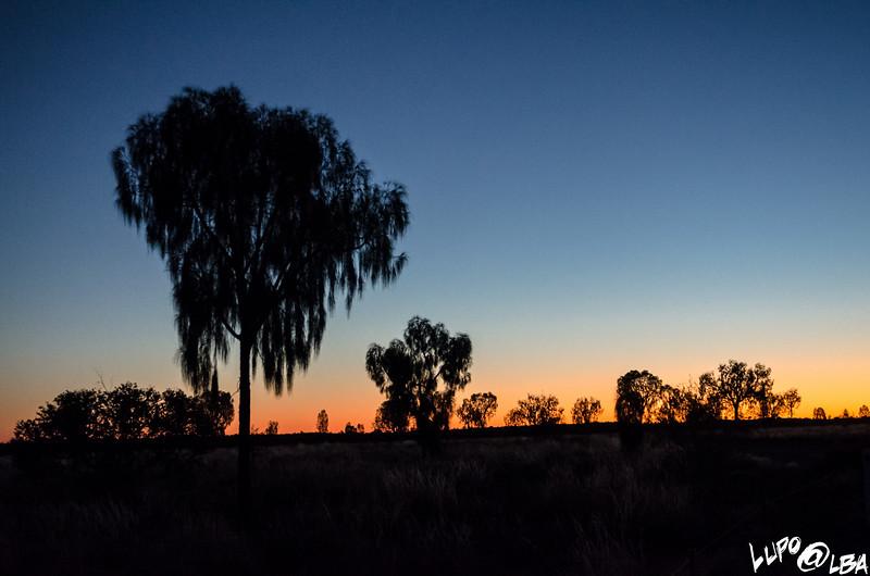 Australia-501.jpg