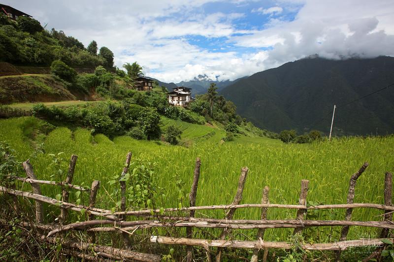 punakha-dzong_chorten-nebu_20120917_8777.jpg